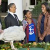 Az amerikai hálaadás napja számokban