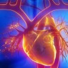 Szakértő: teljes értékű életet lehet élni pacemakerrel is