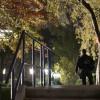 Átmászott egy férfi a Fehér Ház kerítésén, őrkutyák elfogták (videó)