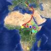 Dél-Afrikáig jutott vándorútján egy jeladós magyar fehér gólya