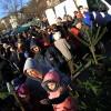 Karácsonyi ünnepség jótékonysággal a Budaörsi Gazdapiacon