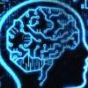"""Cambridge-i kutató szerint az agyat számítógépre """"letöltve"""" lehetséges az örök élet"""