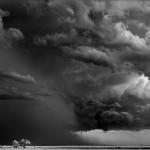 viharbanszul
