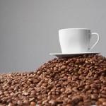 koffein_terhesseg