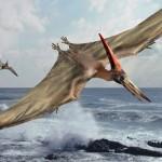pteroszauruszok_Pterosauria