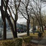 BKV busz Budaörsön