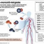 szen_monoxid_mergezes