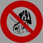 kutya_tilos