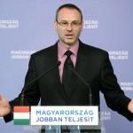 zsigo_robert_fidesz_001