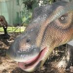Palmersaurus_alapito_ausztralia_dinopark_01