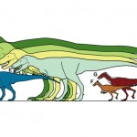 uj_dino_alaszka_2014_meretek_dinoszaurusz