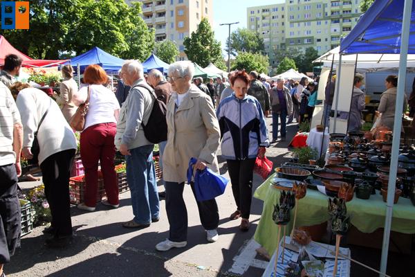 budaorsi_piac_megnyito