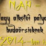 nap_2014