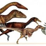 dinoszauruszok_madarak_