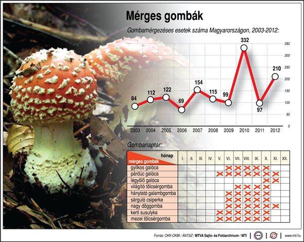 GOMBANAPTÁR - mérges gombák: gyilkos galóca; párdúc galóca; légyölő galóca; világító tölcsérgomba; hánytató galambgomba;sárguló csiperke; nagy döggomba; kerti susulyka; mezei tölcsérgomba