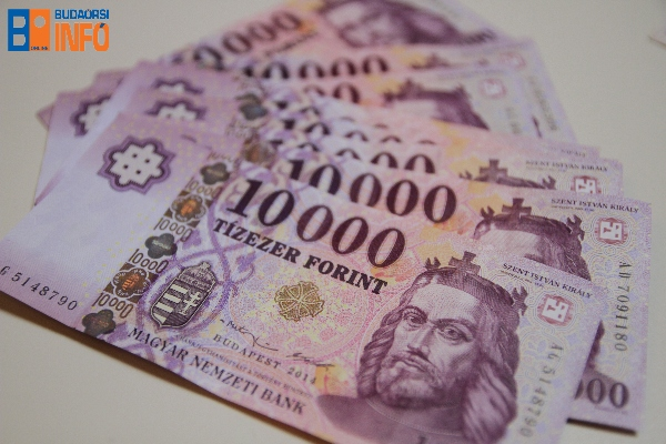 penz (6) forint gazdasag fizetes