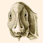 Telmatosaurus_transsylvanicus