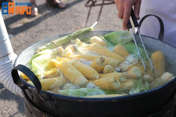 kukorica_gazdapiac (2)