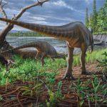 Diluvicursor_pickeringi_pulyka_meretu_dinoszaurusz_ausztralia