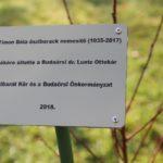 oszibarackfaultetes_kertbaratok18_11_09 (20)