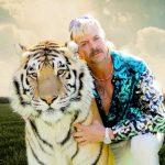 tigrisvilag