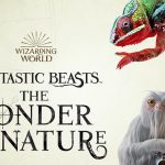 Fantastic Beasts_The Wonder of Nature_kiallitas_legendas_allatok