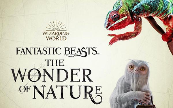 Fantastic Beasts_The Wonder of Nature_kiallitas_legendas_allatok