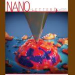 nano_letters_tudomanyos_folyoirat_2021apr_magyar_kutatok_cimlap_koronavirus