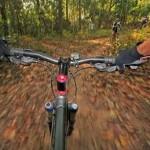 79824-bike2390