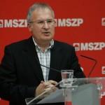 Simon Gábor, MSZP