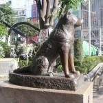 Hatiko (Hachiko) szobra