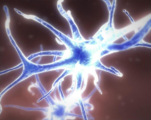 agysejt_neuron_