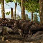 A feltételezések szerint a Pampaphoneus biccai testhossza körülbelül 3 méter lehetett