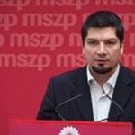 varga_laszlo_mszp