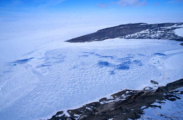 antarktisz_hodson_to_eletformak2