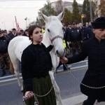 jobbik_horthy_demonstr_bp2013nov