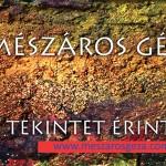 meszaros_meghivo