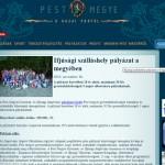 palyazat_pest_megy