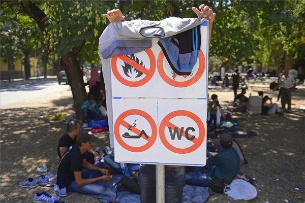 illegalis_bevandorlok_migransok_menekultek_2015jul_magyar_szerb_hatar