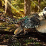velociraptor_szarnyas_sarkany
