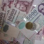 penz (2) forint gazdasag fizetes