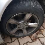 gumiszurkalo_kamaraerdo1_2019dec25