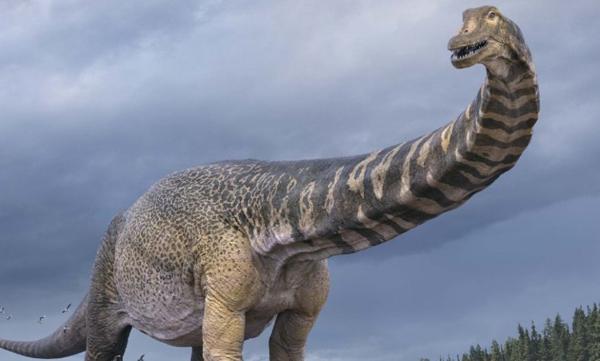 uj_dinoszaurusz_faj_2021_Australotitan_cooperensis